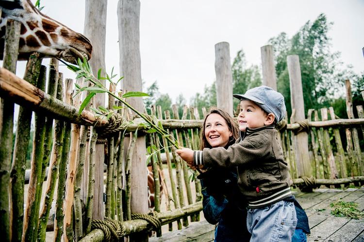 zoo fionia