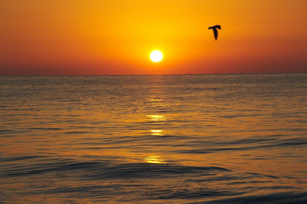 mare--spiagge-basilicata