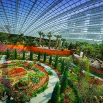 Singapore ed i suoi giardini