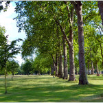 Hyde Park, un polmone verde dove far divertire i bimbi