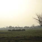 Un viaggio in Kenya