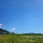 Salisburghese, una regione BIO per bambini