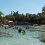 Discovery Cove a Orlando