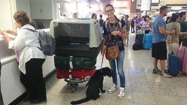 viaggio con cane