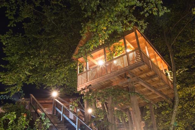 Casa sull 39 albero dove e come dormire - Costruire una casa sull albero per bambini ...