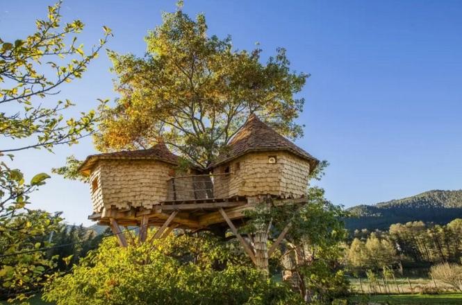 Casa sull 39 albero dove e come dormire for Piani casa sulla riva