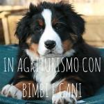 Agriturismo per bimbi e cani