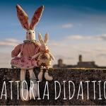 Fattoria Didattica, la natura per i bambini