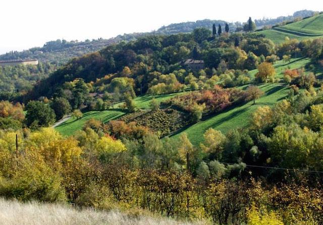 parco collina bologna