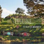 Viaggio in Nuova Zelanda: 5 luoghi da non perdere