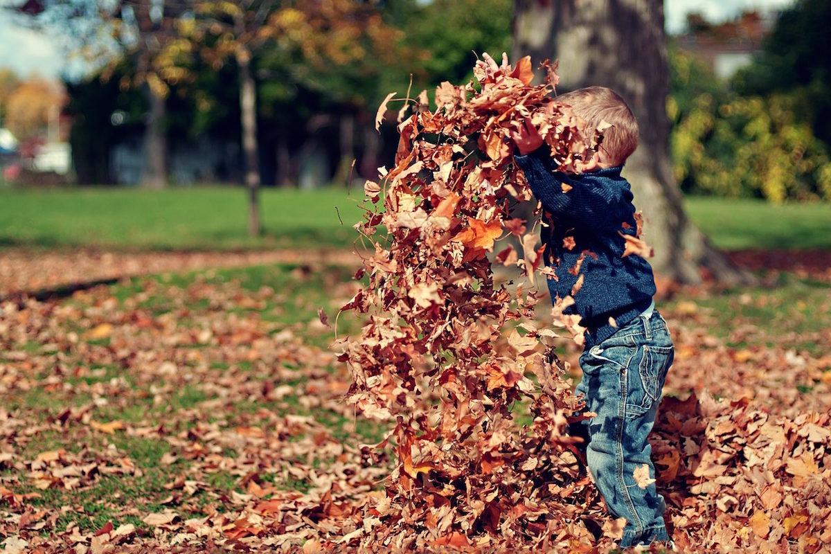 moda autunno petitbo
