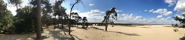 parco dune olanda