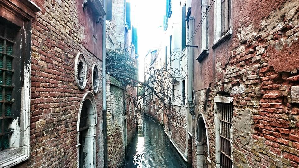 mangiare a venezia