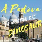 Padova: i dinosauri dell'Argentina