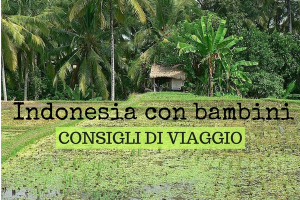 viaggio in Indonesia