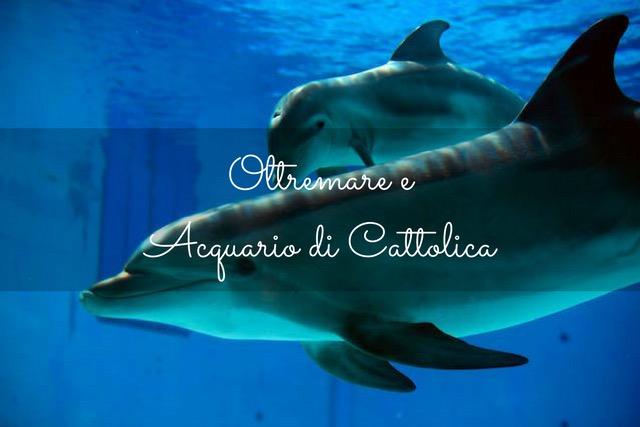 Oltremare - Acquario di Cattolica