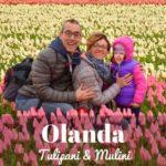 Tulipani e mulini nei Paesi Bassi