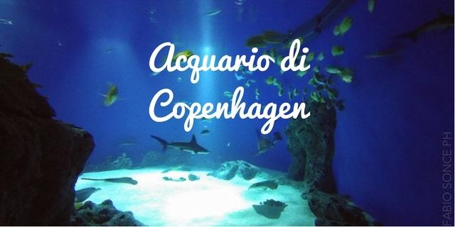 acquario copenhagen
