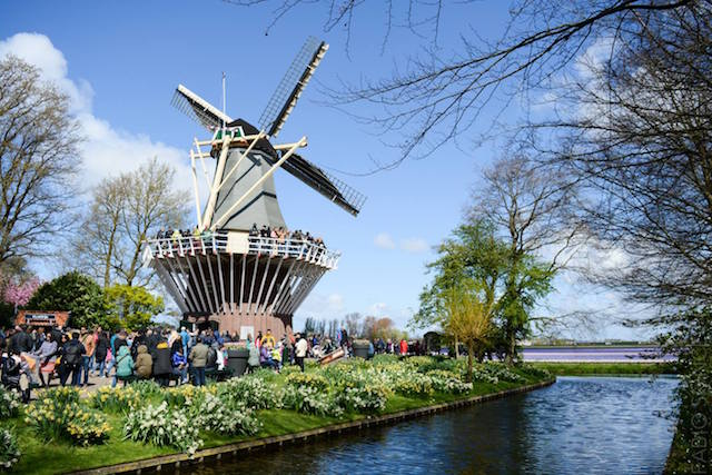 mulino a vento tour olanda