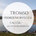 Tromso e i fiordi norvegesi in inverno