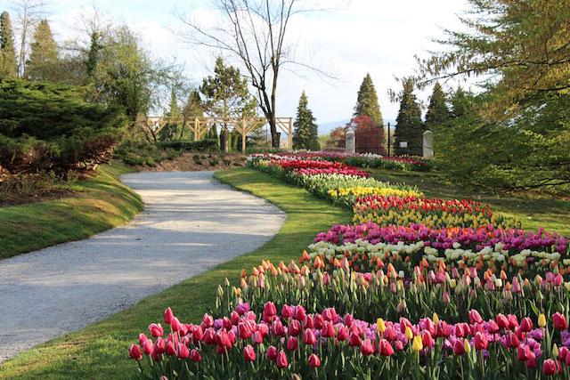 arboretum parchi slovenia