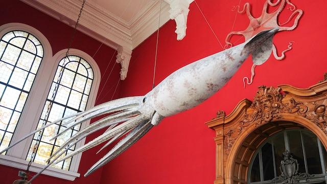 museo oceanografico Monaco