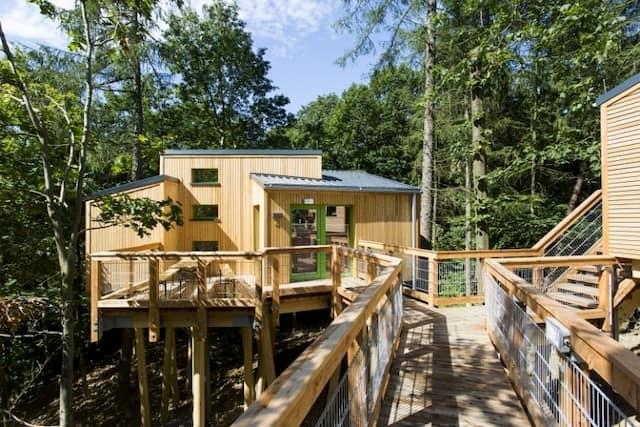 case alberi djh