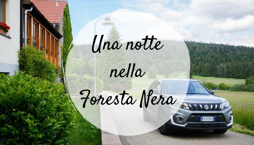 Alloggio Foresta Nera