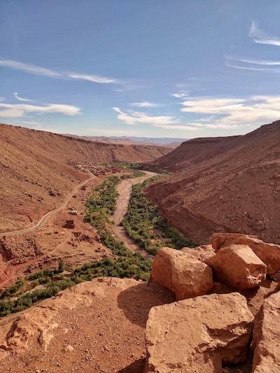 canyon con palmeti Marocco