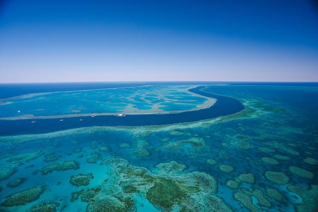 Grande Barriera Corallina australia