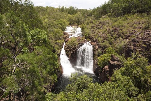 parchi in Australia Parco Nazionale di Litchfield