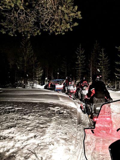 escursione safari notturno nella neve
