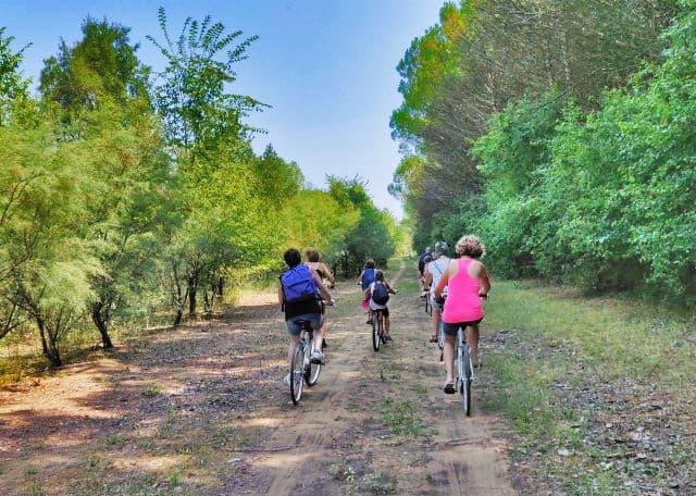 ciclabile tour per famiglie nella natura