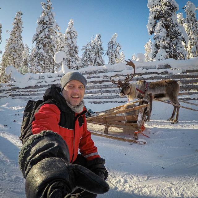 Lapponia finlandese renne Viaggi di Bambiniconlavaligia