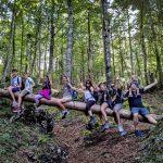 Il sentiero tematico degli alberi di risonanza in Val Saisera