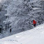 Neve per bambini: settimana bianca in Valsesia