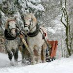 In famiglia tra i borghi del Trentino in inverno