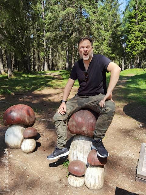 funghi parco giochi dobbiaco