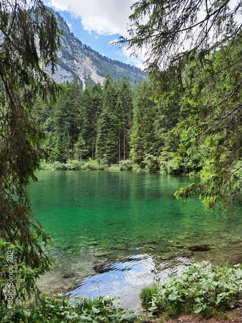 acqua colore smeraldo lago